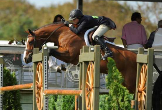 How Composite Technology is Improving Sport Horse Performance – Interview with Tad Coffin